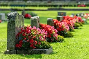 Desecrating Graves with Dead Animals Isn't a Good Look